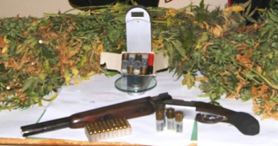 fucile e cannabis3